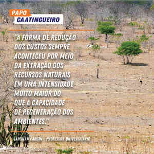 dia mundial combate desertificacao iaponan cardin