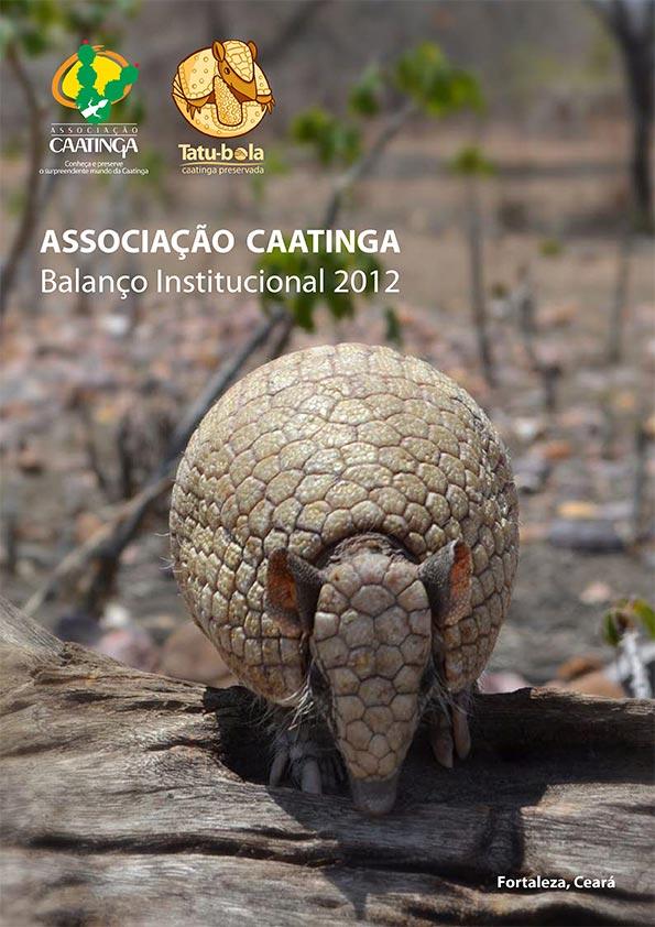associacao-caatinga-balanco-institucional-2012