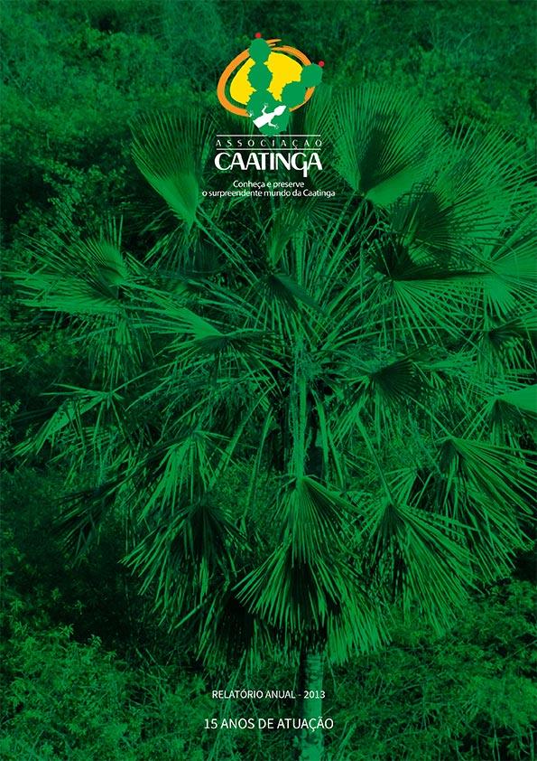 associacao-caatinga-balanco-institucional-2013