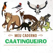 associacao-caatinga-meu-caderno-caatingueiro