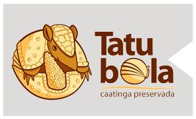 associacao-caatinga-projeto-box-projeto-tatu-bola