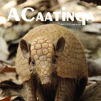 associacao-caatinga-revista-acaatinga-03