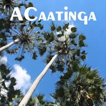 associacao-caatinga-revista-acaatinga-10